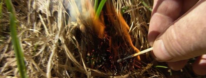 В Солигорском районе 92-летний пенсионер получил серьезные ожоги при выжигании сухой травы
