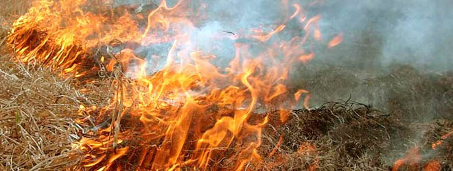 Житель Солигорского района погиб из-за неосторожного обращения с огнем